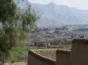 Surobi, Kabul - Image: Sorobi tree