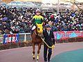 Sound True and Takuya Ono in Tokyo Daishoten at Oi racecourse (31149267824).jpg