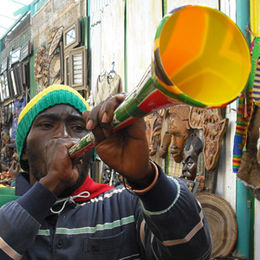 South Africa fan in Johannesburg during World Cup 2010-06-15 1.jpg
