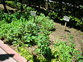 Spice Garden (3714599733).jpg