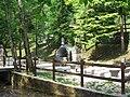 Spinone-parco-fontanino-alpini-01.jpg