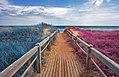 Split Tone Beach Boardwalk - Blue & Pink (10787446286).jpg