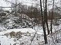 Staw - panoramio (27).jpg