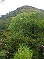 Steep slope of Darren Lwyd - geograph.org.uk - 546638.jpg