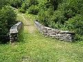 Steinbogenbrücke über den Glenner, Vrin GR 20190730-jag9889.jpg