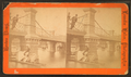 Stereoscopic views of the Boston Public Gardens, from Robert N. Dennis collection of stereoscopic views 4.png