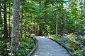 Sterling Munro Trail 01.jpg