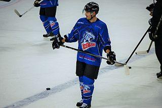 Steven Reinprecht Canadian ice hockey player