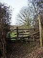 Stile and footpath sign, Godshill - geograph.org.uk - 354935.jpg