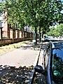 Straßenbrunnen 132 Haselhorst Zitadellenweg (3).jpg