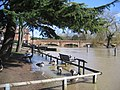 Stratford upon Avon Floods - geograph.org.uk - 1106085.jpg