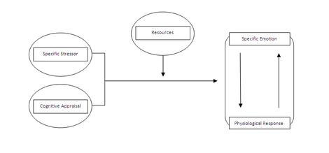 book Multi Channel Retailing: Prinzip, Konzepte und