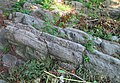 Striated and uplifted rock outcropping, Isham Park.jpg
