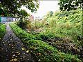 Stroud ... towpath. - Flickr - BazzaDaRambler.jpg