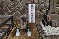 Suno Aogashima Wandering People Cemetery-01.jpg