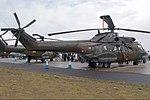 Super Puma (5770900945).jpg
