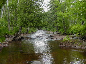 Caribou River (Minnesota) - Looking upstream from the Superior Hiking Trail