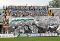 Supporters FC Vorskla Poltava.jpg