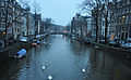 Swans in a canal (5822070926).jpg