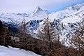 Switzerland 2012-02-11 (7000753049).jpg