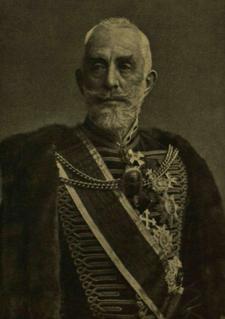 Gyula Széchényi Hungarian politician
