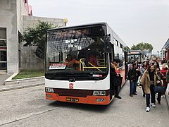 TCM MM7134 Lotus Port Shuttle.jpg