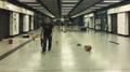 Tai Wai Station damage 20191001.png