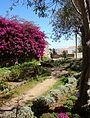 Tavira (Portugal) (22084258034).jpg
