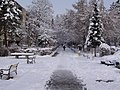 "TgMures - Tudor - walkaway near ""Super"" playground in winter - panoramio.jpg"