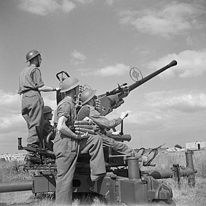 Leicester Town Rifles - Bofors gun and crew, summer 1944