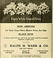 The Florists' exchange - a weekly medium of interchange for florists, nurserymen, seedsmen and the trade in general (1917) (14751209976).jpg