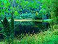 The Green - panoramio.jpg