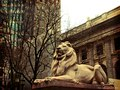 The New York Public Library.tif