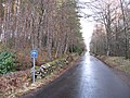 The South Loch Tay Road - geograph.org.uk - 1086435.jpg