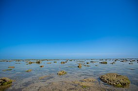 The Vast Expanse of Narara Sea Bed during Low Tide of Narara Marine National Park.jpg