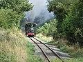 The Welshpool and Llanfair Light Railway at Golfa - geograph.org.uk - 956447.jpg
