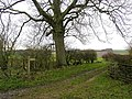 The Wolds Way to Thixen Dale - geograph.org.uk - 285335.jpg