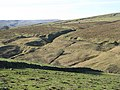 The cleugh of Middlehope Burn (3) - geograph.org.uk - 703459.jpg