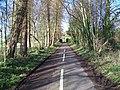 The lane to Bugley - geograph.org.uk - 1595172.jpg