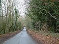 The road to Deane and Ashe - geograph.org.uk - 98427.jpg