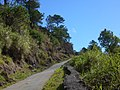 The road to Maligcong (3300021100).jpg