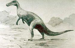1901年绘制的强龙想像图