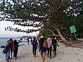 Tim Wiki Yogyakarta menyusuri Pantai Tanjung Gelam.jpg
