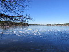 Tispaquin Pond, Middleborough MA.jpg