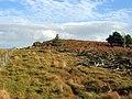 Tod Crag, Ottercops Moss - geograph.org.uk - 1085932.jpg