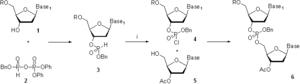 Oligonucleotide synthesis - Scheme. 1. i: N-Chlorosuccinimide; Bn = -CH2Ph