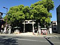 Torii of Sumiyoshi Shrine across the road.JPG