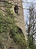 Tour du château de Miribel (ruines) en février 2021 (10).jpg