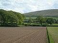Towards Moorston - geograph.org.uk - 424760.jpg