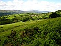 Towards the Brecon Beacons - geograph.org.uk - 447436.jpg